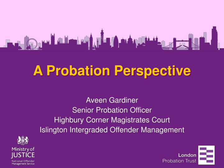 a probation perspective n.