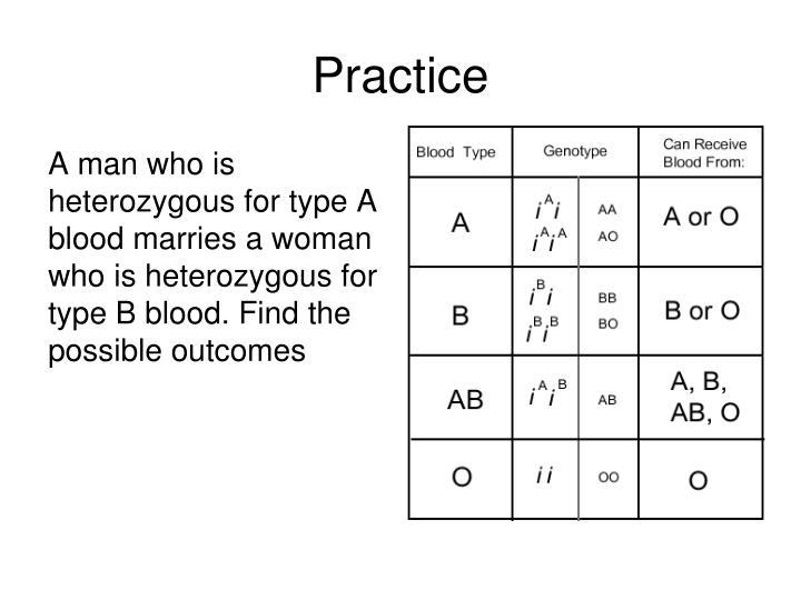 PPT - Di hybrid Crosses PowerPoint Presentation - ID:3516539
