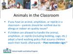 animals in the classroom1