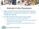 animals in the classroom2