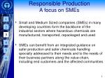 responsible production a focus on smes