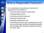 what is responsible production