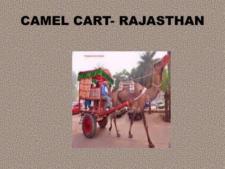 CAMEL CART- RAJASTHAN