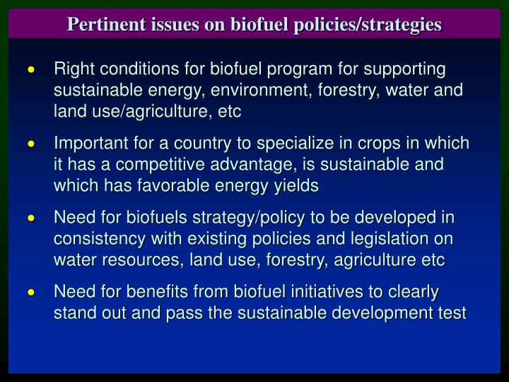 Pertinent issues on biofuel policies/strategies