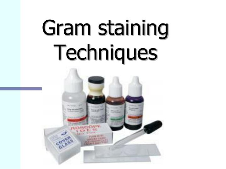 gram staining techniques n.