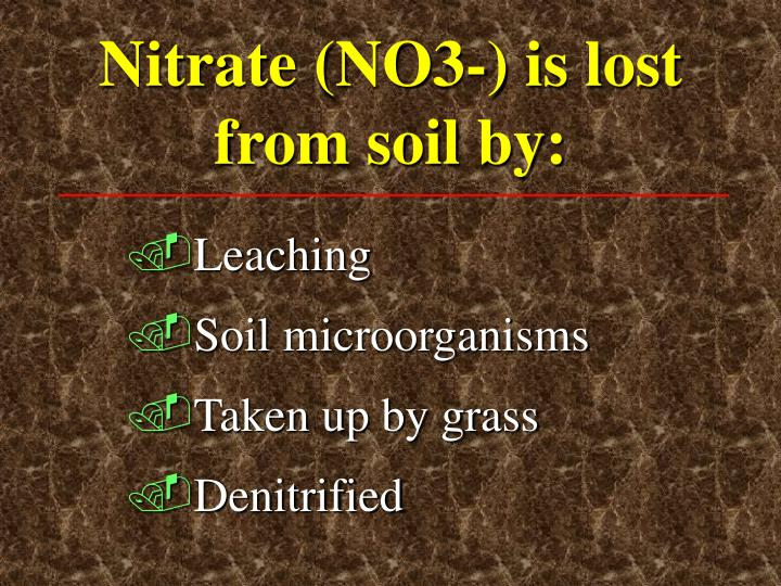 Nitrate (NO3-) is lost