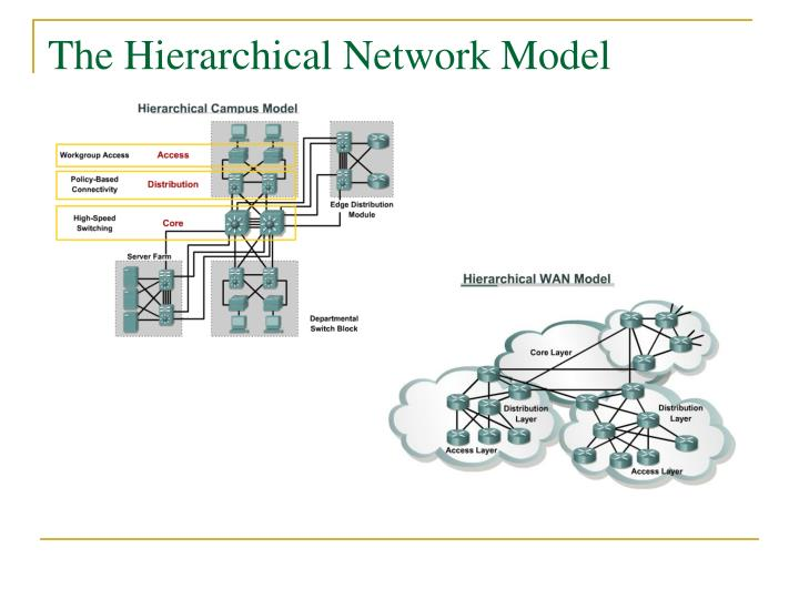 The Hierarchical Network Model