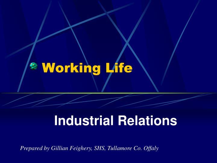 working life n.