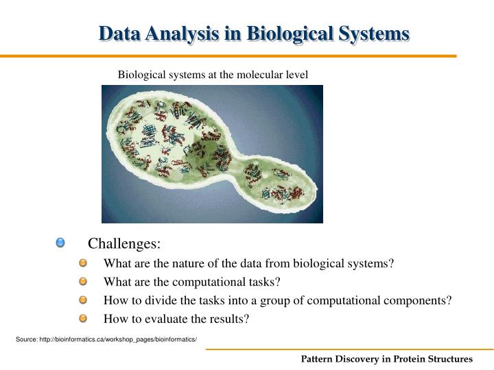 Biological systems at the molecular level