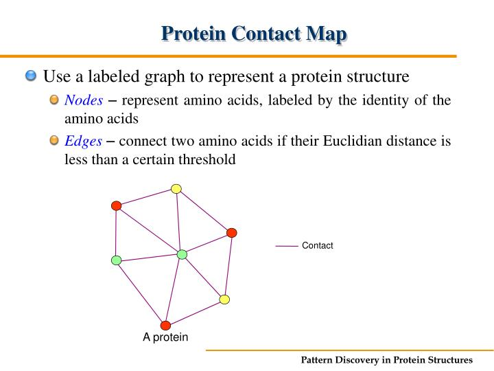 Protein Contact Map