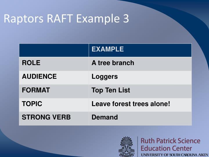 Raptors RAFT Example 3