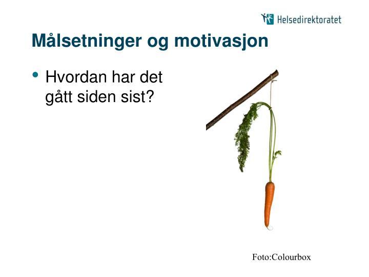M lsetninger og motivasjon