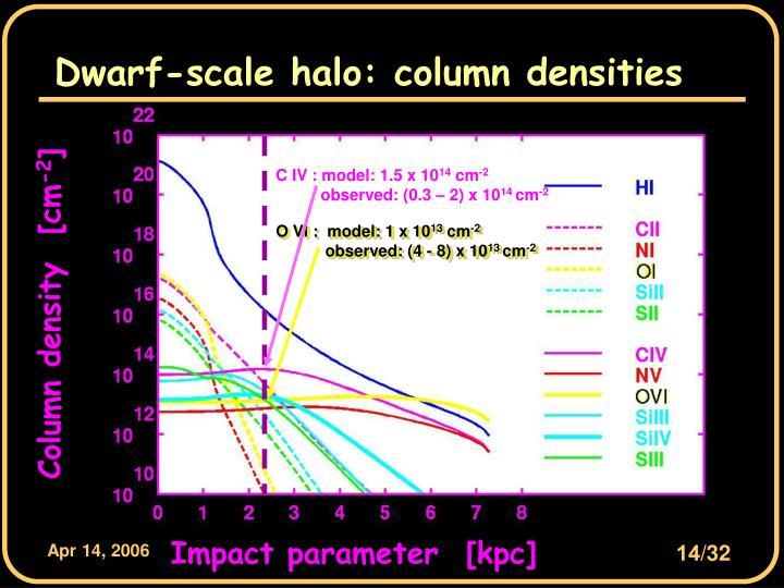 Dwarf-scale halo: column densities