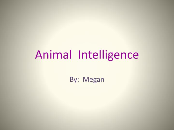 a study of animal intelligence The raccoon: a study in animal intelligence by h b davis, fellow in clark university table of contents page i introduction 2 zoological and taxonomic.