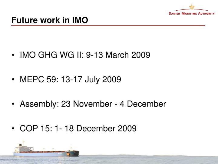 Future work in IMO