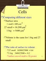 cells7