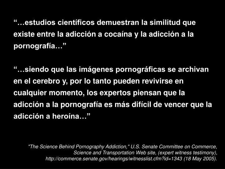 """""""…estudios científicos demuestran la similitud que existe entre la adicción a cocaína y la adicción a la pornografía…"""""""