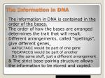 the information in dna
