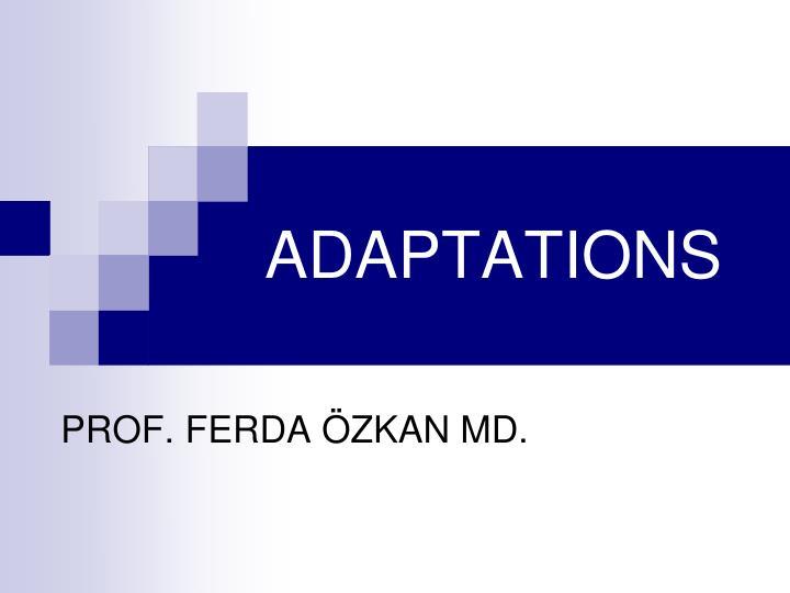 adaptations n.