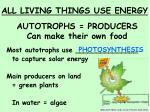 autotrophs producers can make their own food
