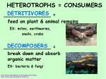 heterotrophs consumers1