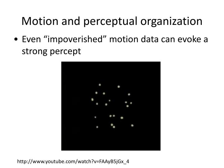 Motion and perceptual organization
