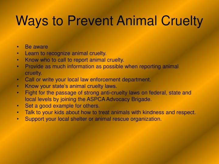 the connections between animal cruelty and other forms of crime Animal abuse is often a red flag that other can we find a link between animal abuse and violent crimes find a connection between animal cruelty and.
