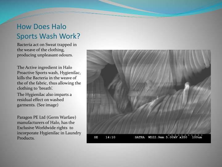 How does halo sports wash work
