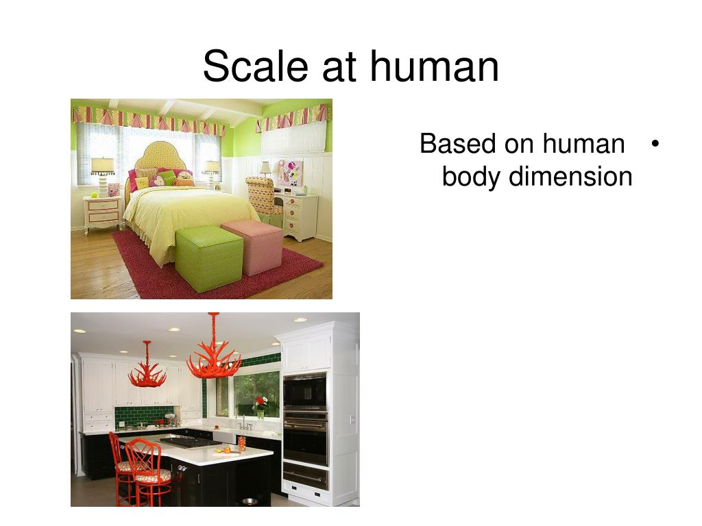 PPT - Proportion and Scale PowerPoint Presentation, free ...