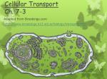 cellular transport ch 7 3