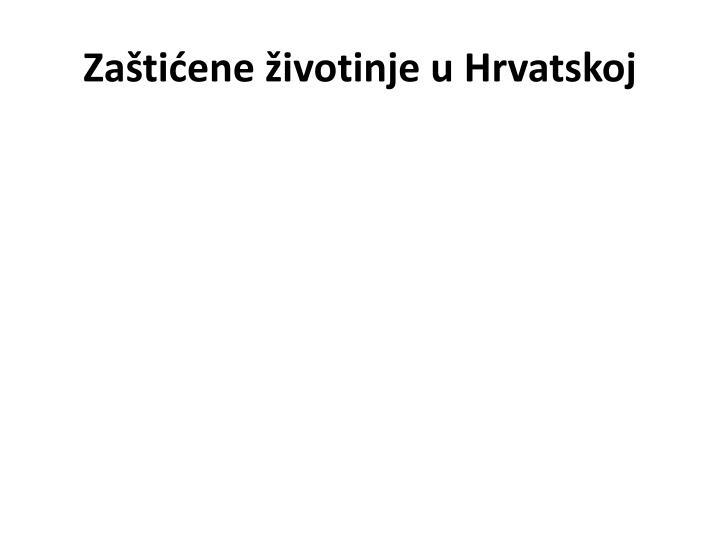 za ti ene ivotinje u hrvatskoj