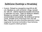 za ti ene ivotinje u hrvatskoj10