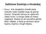 za ti ene ivotinje u hrvatskoj12