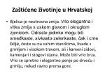 za ti ene ivotinje u hrvatskoj3