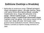 za ti ene ivotinje u hrvatskoj4