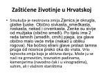za ti ene ivotinje u hrvatskoj5