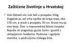 za ti ene ivotinje u hrvatskoj7