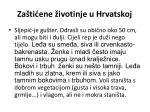 za ti ene ivotinje u hrvatskoj8