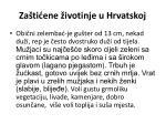 za ti ene ivotinje u hrvatskoj9