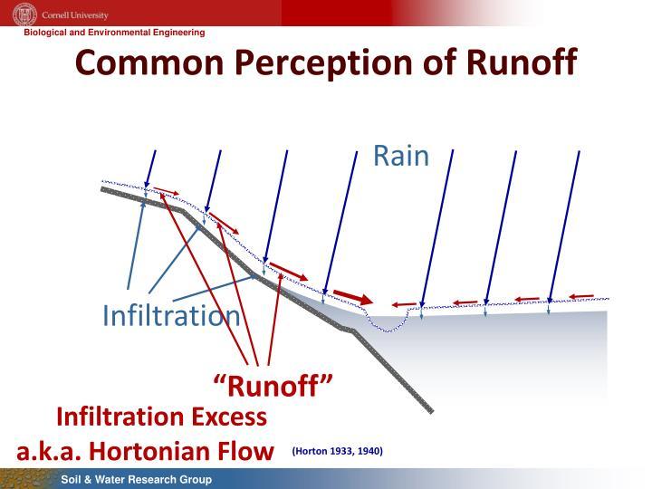 Common perception of runoff