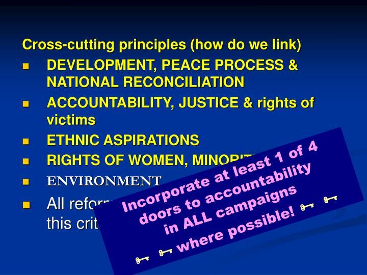 Cross-cutting principles (how do we link)