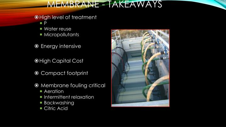 MEMBRANE - Takeaways