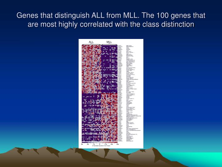 Genes that distinguish ALL from MLL. The 100 genes that are most highly correlated with the class distinction