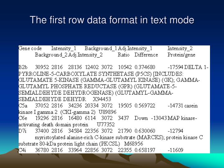 The first row data format in text mode