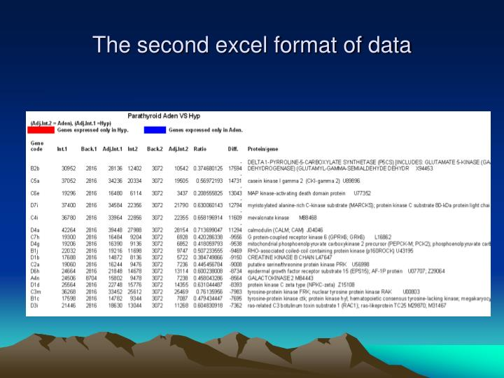 The second excel format of data