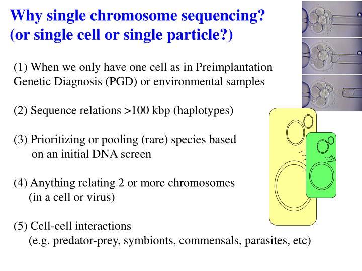 chromo single personals Speeddatecom.
