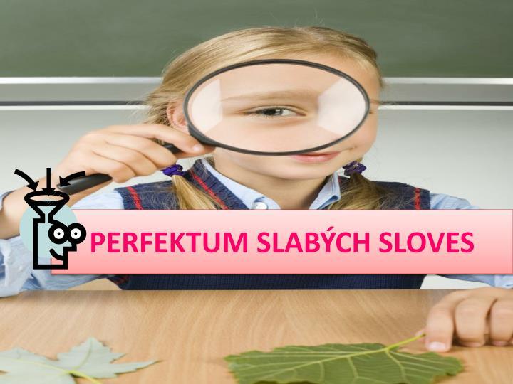 PERFEKTUM SLABÝCH SLOVES