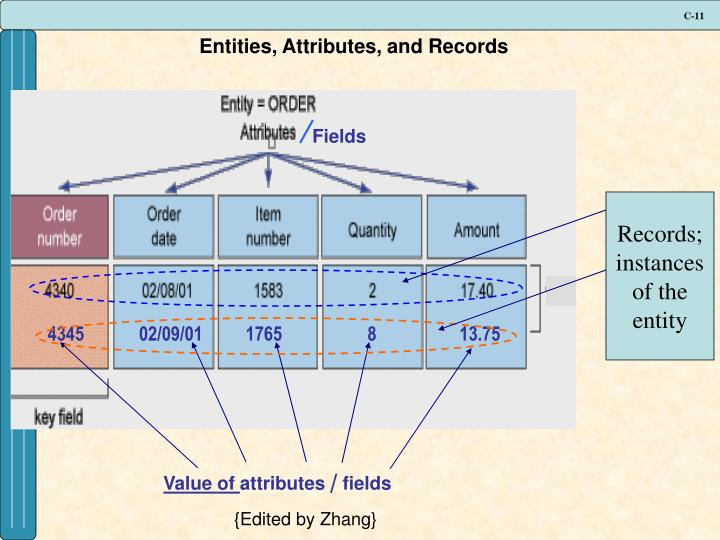 Entities, Attributes, and Records