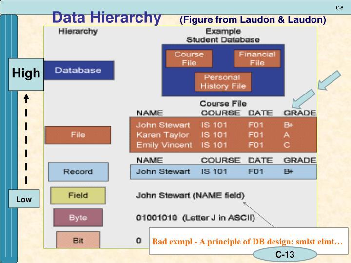 Data Hierarchy