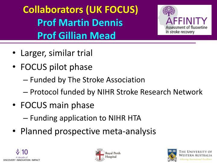 Collaborators (UK FOCUS)